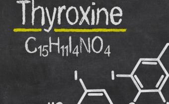 Как повысить уровень гормона тироксина народными средствами